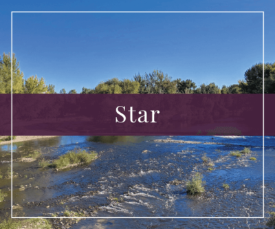 Star Real Estate and Homes